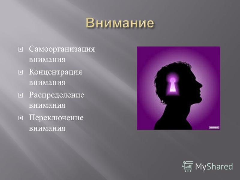 Самоорганизация внимания Концентрация внимания Распределение внимания Переключение внимания
