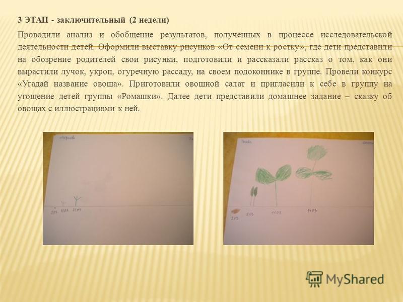 3 ЭТАП - заключительный (2 недели) Проводили анализ и обобщение результатов, полученных в процессе исследовательской деятельности детей. Оформили выставку рисунков «От семени к ростку», где дети представили на обозрение родителей свои рисунки, подгот