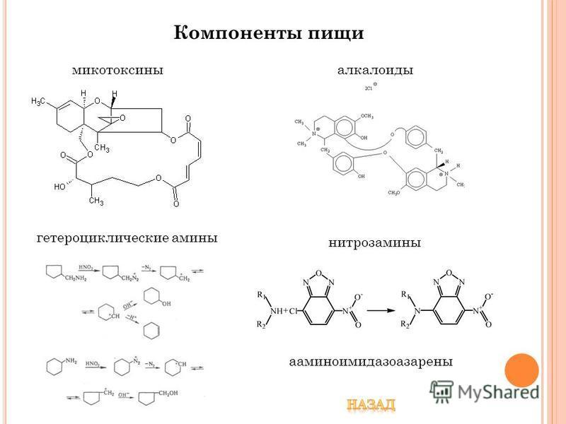 Компоненты пищи нитрозамины микотоксины алкалоиды гетероциклические амины ааминоимидазоазарены