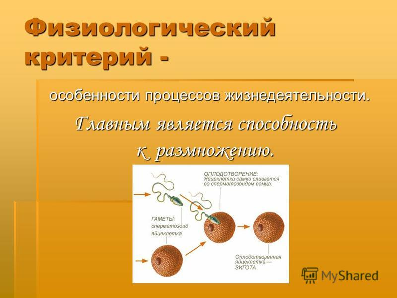 Физиологический критерий - особенности процессов жизнедеятельности. особенности процессов жизнедеятельности. Главным является способность к размножению.