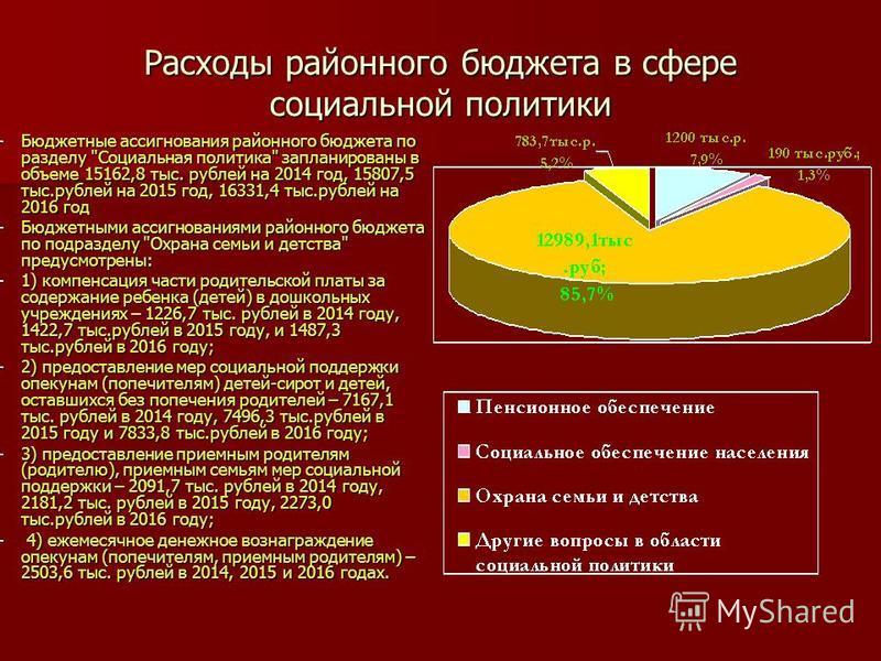 Расходы районного бюджета в сфере социальной политики –Бюджетные ассигнования районного бюджета по разделу