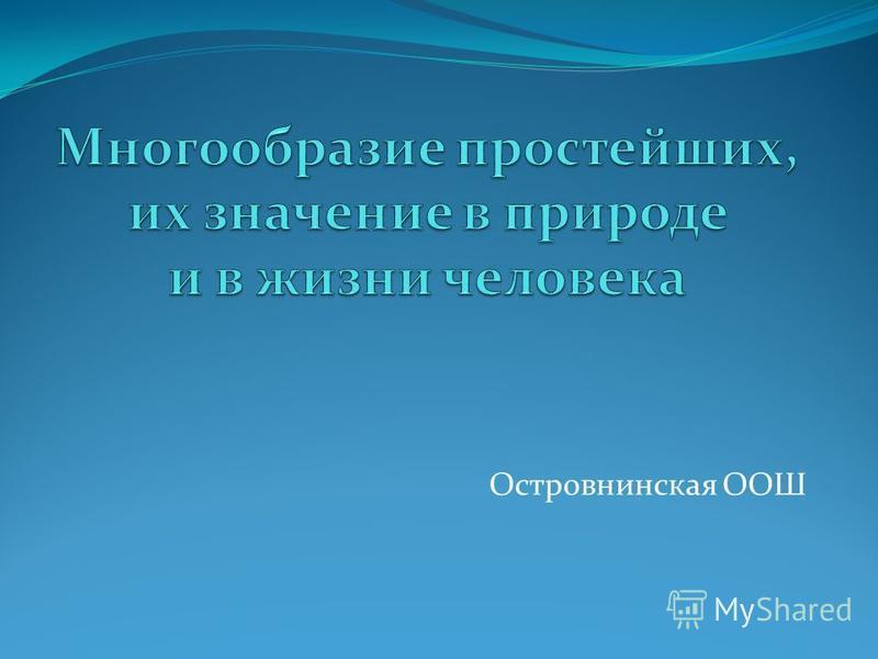 Островнинская ООШ