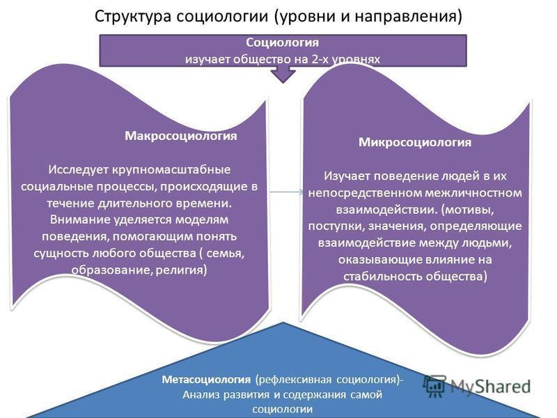Структура социологии (уровни и направления) Социология изучает общество на 2-х уровнях Макросоциология Исследует крупномасштабные социальные процессы, происходящие в течение длительного времени. Внимание уделяется моделям поведения, помогающим понять