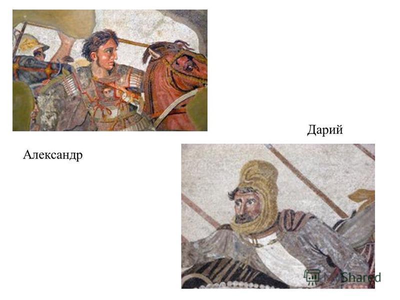 Александр Дарий