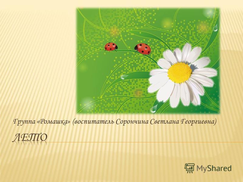 Группа «Ромашка» (воспитатель Сорончина Светлана Георгиевна)