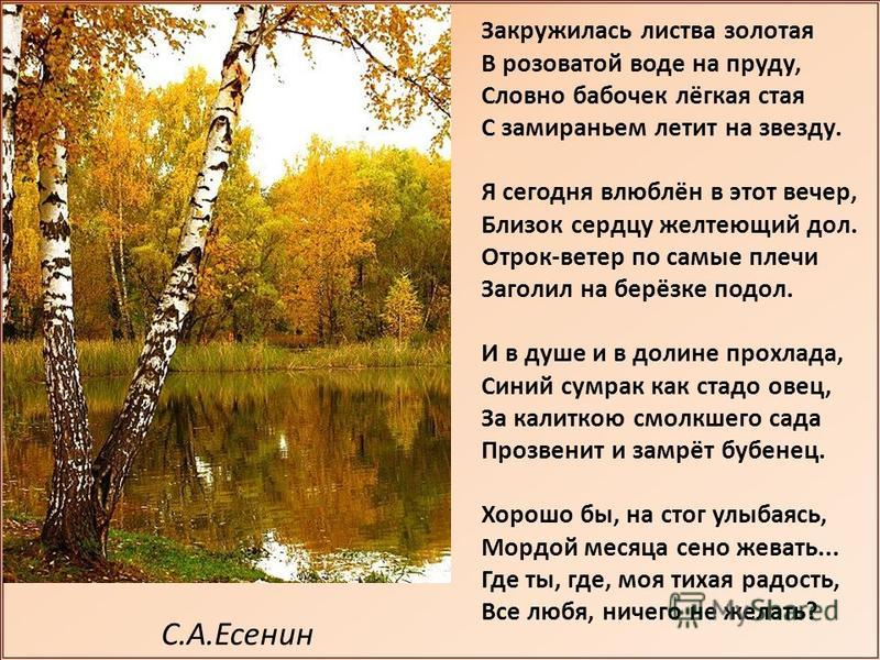 С.А.Есенин Закружилась листва золотая В розоватой воде на пруду, Словно бабочек лёгкая стая С замираньем летит на звезду. Я сегодня влюблён в этот вечер, Близок сердцу желтеющий дол. Отрок-ветер по самые плечи Заголил на берёзке подол. И в душе и в д