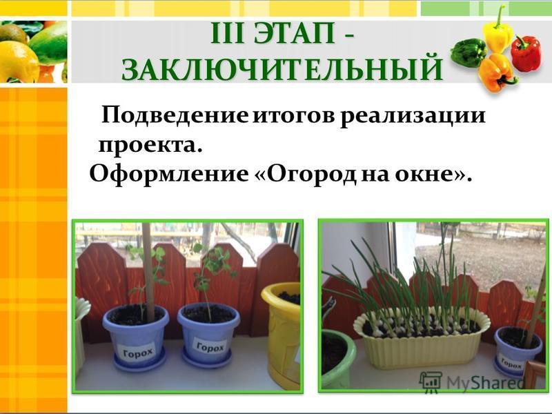 Подведение итогов реализации проекта. Оформление «Огород на окне».