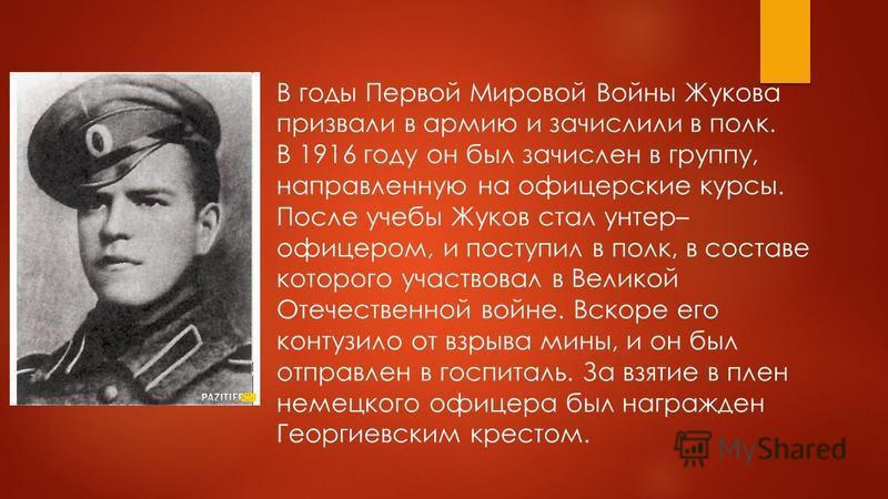 В годы Первой Мировой Войны Жукова призвали в армию и зачислили в полк. В 1916 году он был зачислен в группу, направленную на офицерские курсы. После учебы Жуков стал унтер– офицером, и поступил в полк, в составе которого участвовал в Великой Отечест