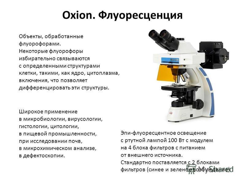 Oxion. Флуоресценция Объекты, обработанные флуорофорами. Некоторые флуорофоры избирательно связываются с определенными структурами клетки, такими, как ядро, цитоплазма, включения, что позволяет дифференцировать эти структуры. Широкое применение в мик