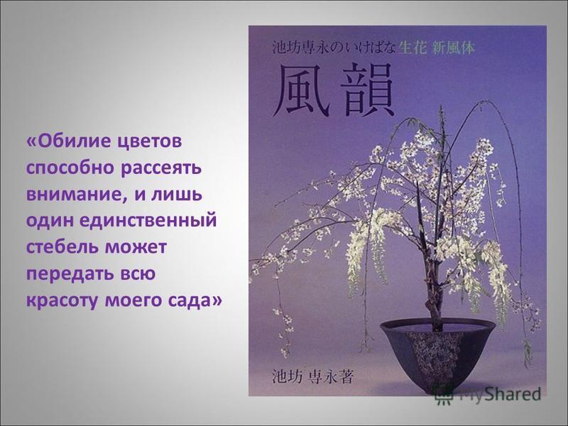 «Обилие цветов способно рассеять внимание, и лишь один единственный стебель может передать всю красоту моего сада»