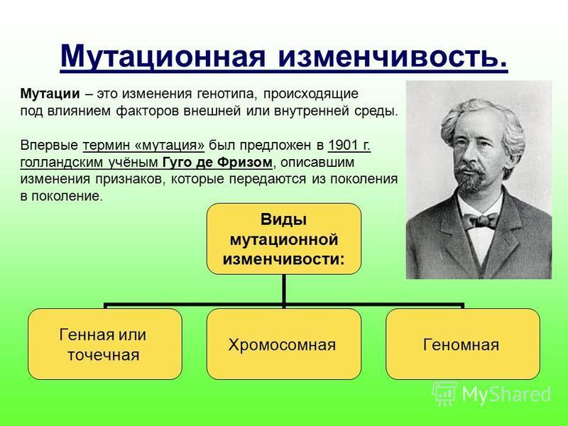 Мутационная изменчивость. Мутации – это изменения генотипа, происходящие под влиянием факторов внешней или внутренней среды. Впервые термин «мутация» был предложен в 1901 г. голландским учёным Гуго де Фризом, описавшим изменения признаков, которые пе