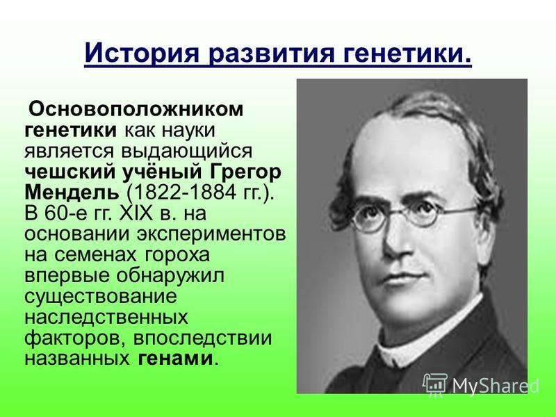 История развития генетики. Основоположником генетики как науки является выдающийся чешский учёный Грегор Мендель (1822-1884 гг.). В 60-е гг. XIX в. на основании экспериментов на семенах гороха впервые обнаружил существование наследственных факторов,