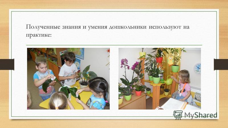 Полученные знания и умения дошкольники используют на практике: