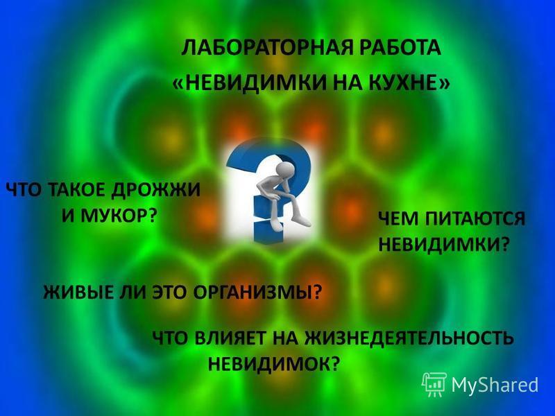 ЛАБОРАТОРНАЯ РАБОТА «НЕВИДИМКИ НА КУХНЕ» ЧТО ТАКОЕ ДРОЖЖИ И МУКОР? ЧЕМ ПИТАЮТСЯ НЕВИДИМКИ? ЖИВЫЕ ЛИ ЭТО ОРГАНИЗМЫ? ЧТО ВЛИЯЕТ НА ЖИЗНЕДЕЯТЕЛЬНОСТЬ НЕВИДИМОК?
