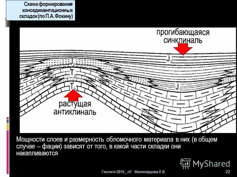 Геологи-2015_ л 7 Милосердова Л.В. 22 Схема формирования конседиментационных складок (по П.А. Фокину) Мощности слоев и размерность обломочного материала в них (в общем случае – фации) зависят от того, в какой части складки они накапливаются