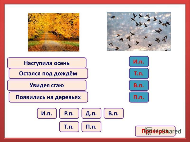 Наступила осень Остался под дождём Увидел стаю Появились на деревьях В.п.И.п.Р.п.Д.п. Т.п.П.п. И.п. Т.п. В.п. П.п. Проверка