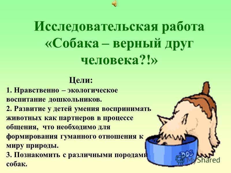 Исследовательская работа «Собака – верный друг человека?!» Цели: 1. Нравственно – экологическое воспитание дошкольников. 2. Развитие у детей умения воспринимать животных как партнеров в процессе общения, что необходимо для формирования гуманного отно