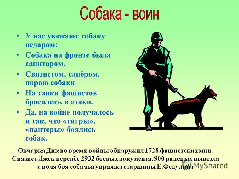 У нас уважают собаку недаром: Собака на фронте была санитаром, Связистом, сапёром, порою собаки На танки фашистов бросались в атаки. Да, на войне получалось и так, что «тигры», «пантеры» боялись собак. Овчарка Дик во время войны обнаружил 1728 фашист