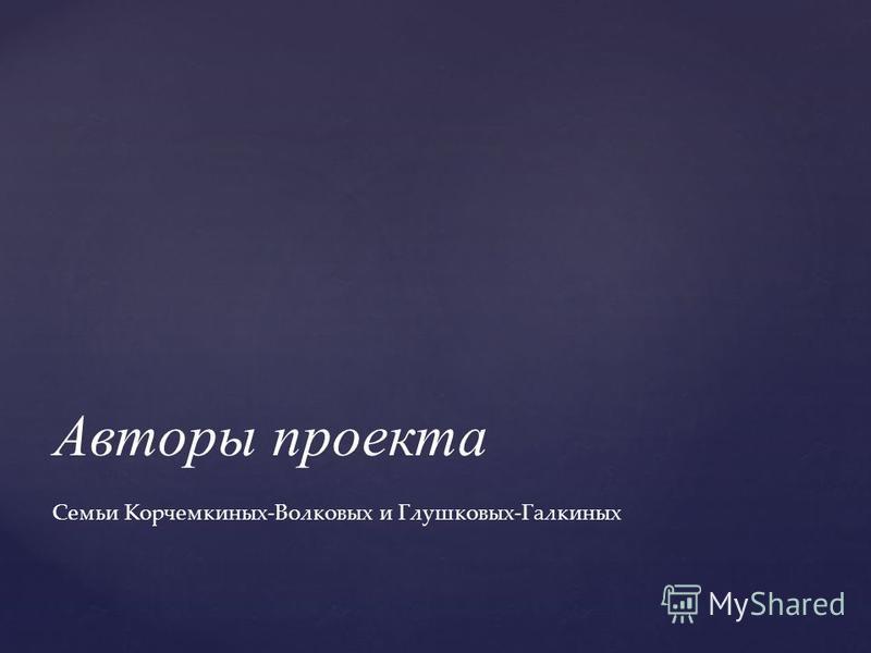 Авторы проекта Семьи Корчемкиных-Волковых и Глушковых-Галкиных