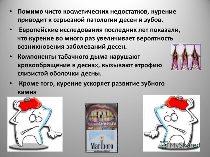Помимо чисто косметических недостатков, курение приводит к серьезной патологии десен и зубов. Европейские исследования последних лет показали, что курение во много раз увеличивает вероятность возникновения заболеваний десен. Компоненты табачного дыма