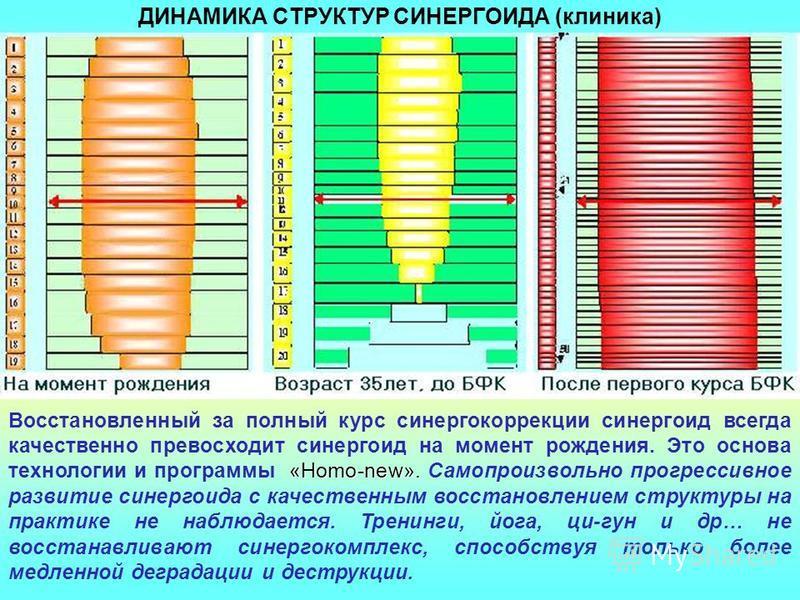 КЛАССИФИКАТОР СИНЕРГОИДА Указаны высшие (пограничные) уровни для обозначенной категории синергостатуса (в скобках - физический статус): 1. Высшая гармония (высшая гармония). 2. Гармония (гармония). 3. Адаптивность (норма). 4. Умеренный синергодефицит