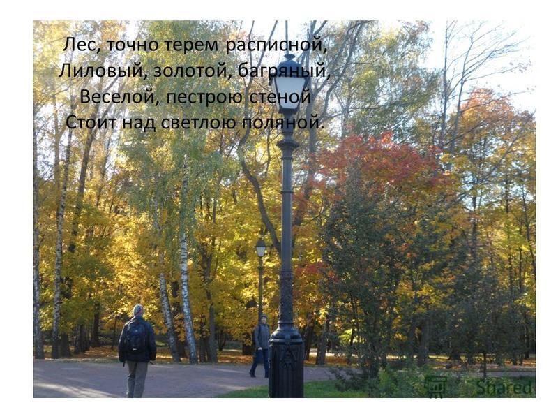 Лес, точно терем расписной, Лиловый, золотой, багряный, Веселой, пестрою стеной Стоит над светлою поляной.
