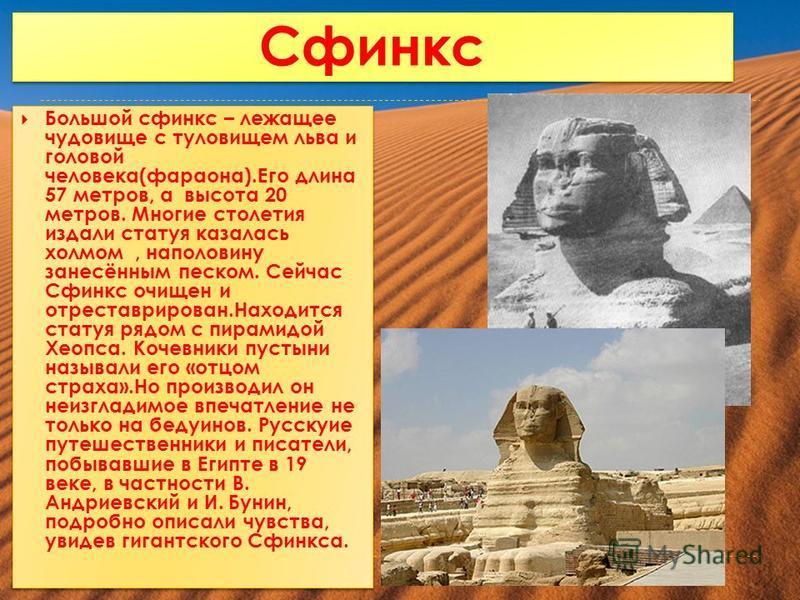 Сфинкс Большой сфинкс – лежащее чудовище с туловищем льва и головой человека(фараона).Его длина 57 метров, а высота 20 метров. Многие столетия издали статуя казалась холмом, наполовину занесённым песком. Сейчас Сфинкс очищен и отреставрирован.Находит