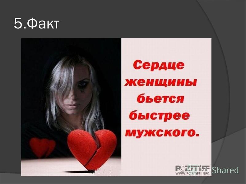 5.Факт