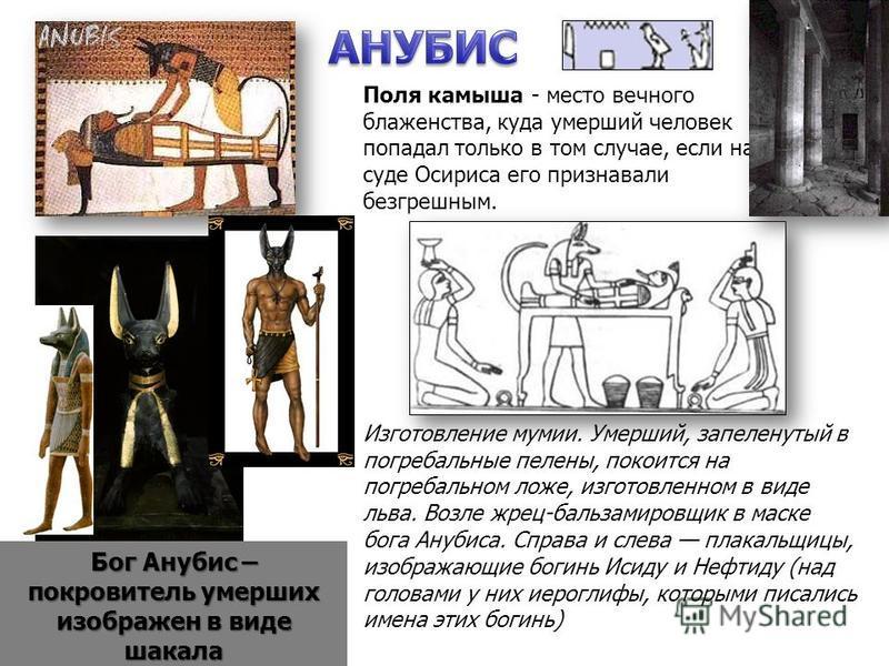 Бог Анубис – покровитель умерших изображен в виде шакала Изготовление мумии. Умерший, запеленутый в погребальные пелены, покоится на погребальном ложе, изготовленном в виде льва. Возле жрец-бальзамировщик в маске бога Анубиса. Справа и слева плакальщ
