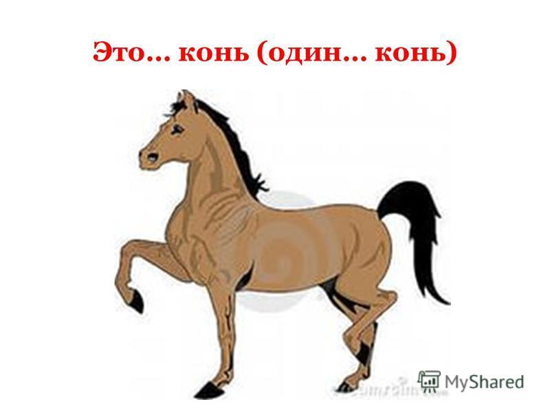 Это… конь (один… конь)