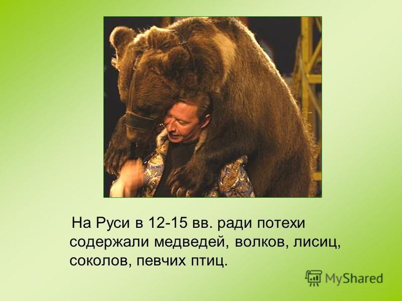 На Руси в 12-15 вв. ради потехи содержали медведей, волков, лисиц, соколов, певчих птиц.