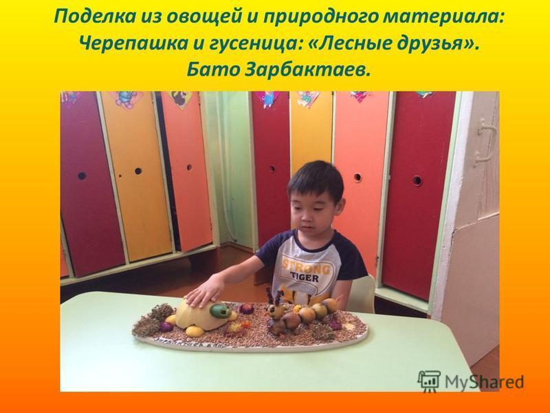 Поделка из овощей и природного материала: Черепашка и гусеница: «Лесные друзья». Бато Зарбактаев.