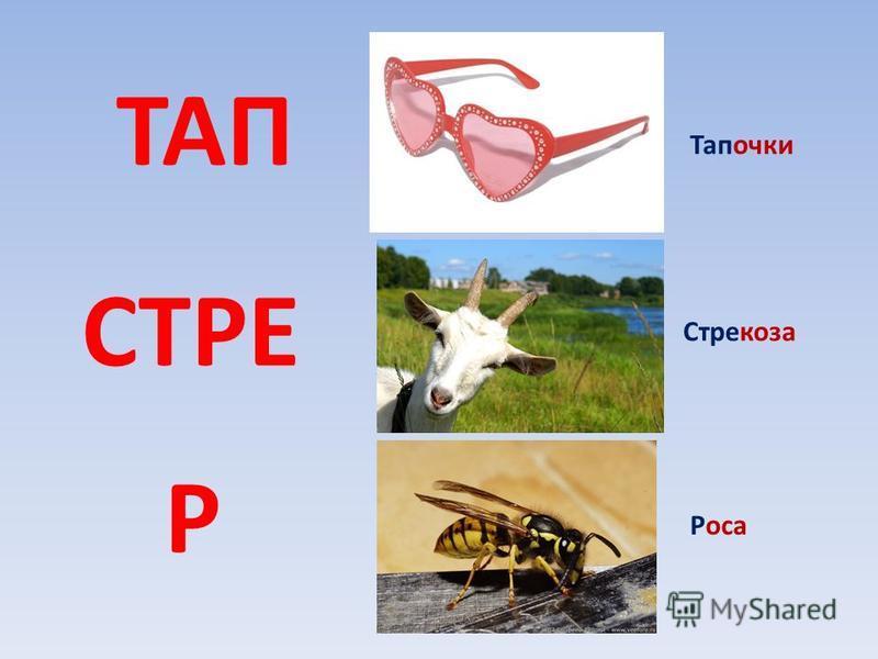 ТАП СТРЕ Р Тапочки Стрекоза Роса