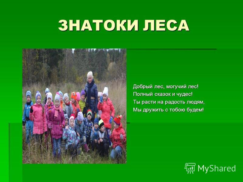 ЗНАТОКИ ЛЕСА Добрый лес, могучий лес! Полный сказок и чудес! Ты расти на радость людям, Мы дружить с тобою будем!