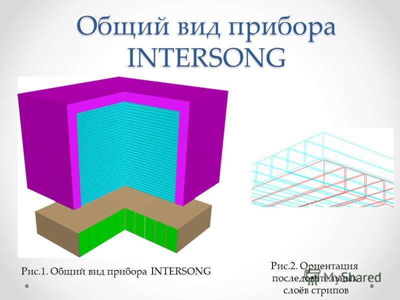Общий вид прибора INTERSONG Рис.1. Общий вид прибора INTERSONG Рис.2. Ориентация последовательных слоёв стропов