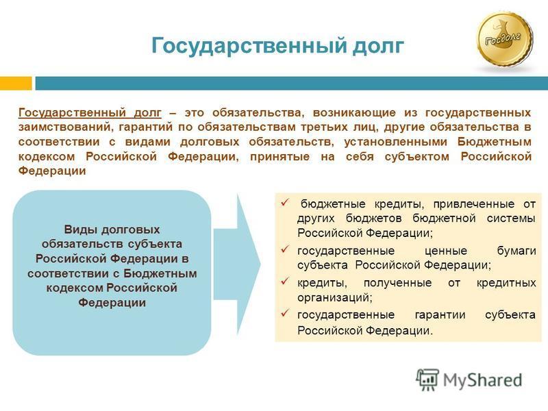 Государственный долг бюджетные кредиты, привлеченные от других бюджетов бюджетной системы Российской Федерации; государственные ценные бумаги субъекта Российской Федерации; кредиты, полученные от кредитных организаций; государственные гарантии субъек