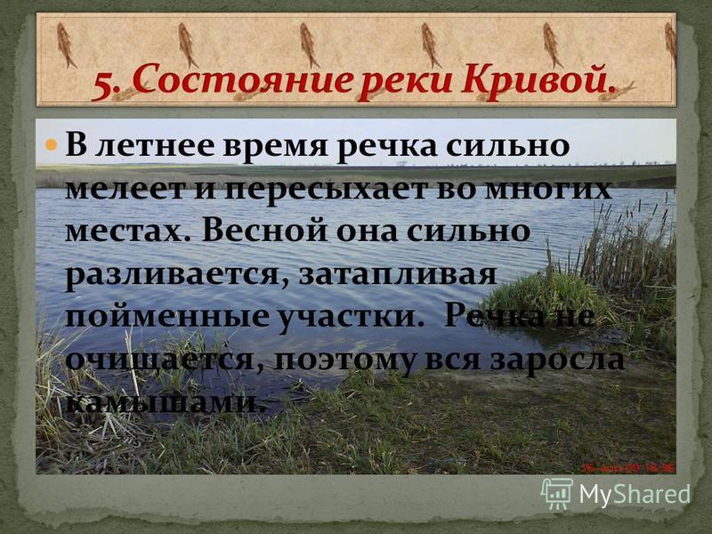 Хутор Горбатовский расположен на юго-западе Серафимовичского района Волгоградской области, на границе с Ростовской областью.