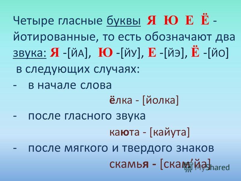 Четыре гласные буквы Я Ю Е Ё - йотированные, то есть обозначают два звука: Я -[ ЙА ], Ю -[ ЙУ ], Е -[ ЙЭ ], Ё -[ ЙО ] в следующих случаях: -в начале слова ёлка - [йорка] -после гласного звука каюта - [кайута] -после мягкого и твердого знаков скамья -