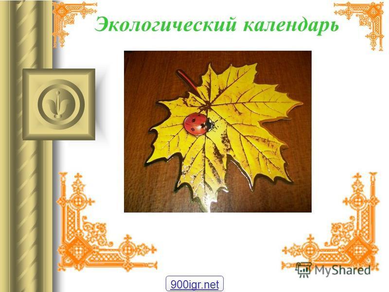 Экологический календарь 900igr.net