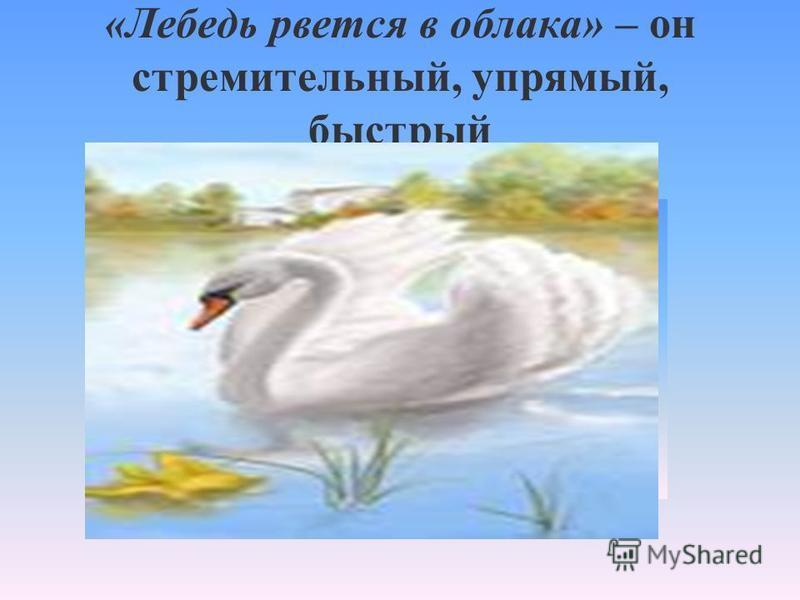 «Лебедь рвется в облака» – он стремительный, упрямый, быстрый