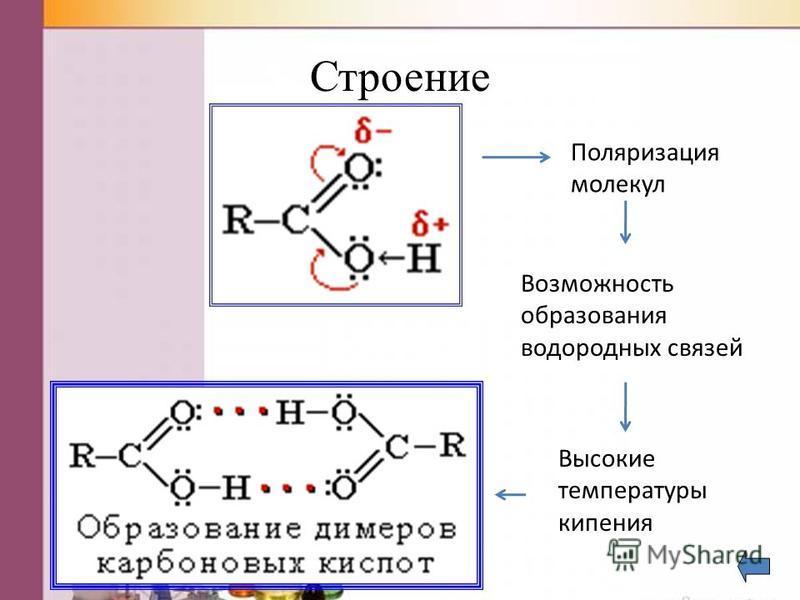 Строение Поляризация молекул Возможность образования водородных связей Высокие температуры кипения