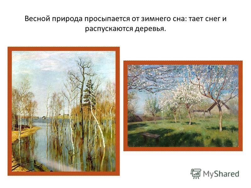 Весной природа просыпается от зимнего сна: тает снег и распускаются деревья.