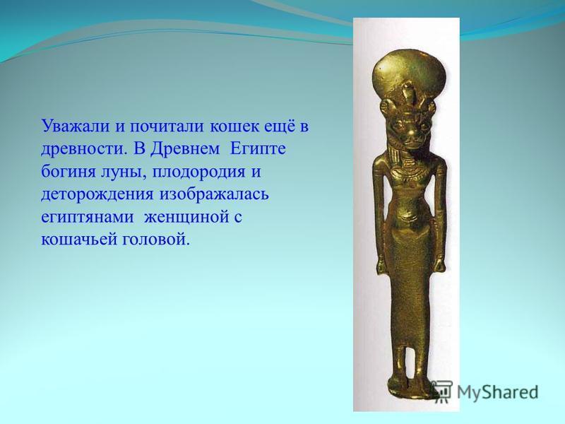 Уважали и почитали кошек ещё в древности. В Древнем Египте богиня луны, плодородия и деторождения изображалась египтянами женщиной с кошачьей головой.