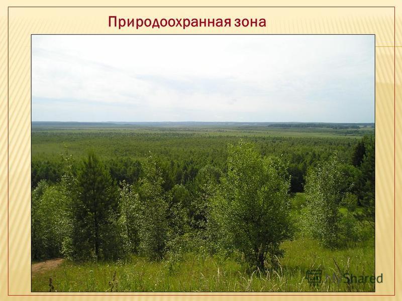 Природоохранная зона