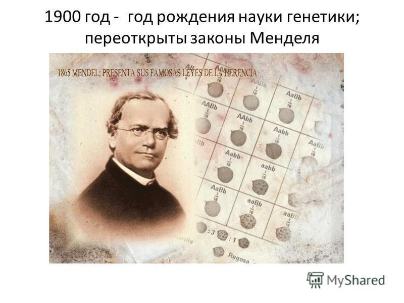1900 год - год рождения науки генетики; переоткрыты законы Менделя