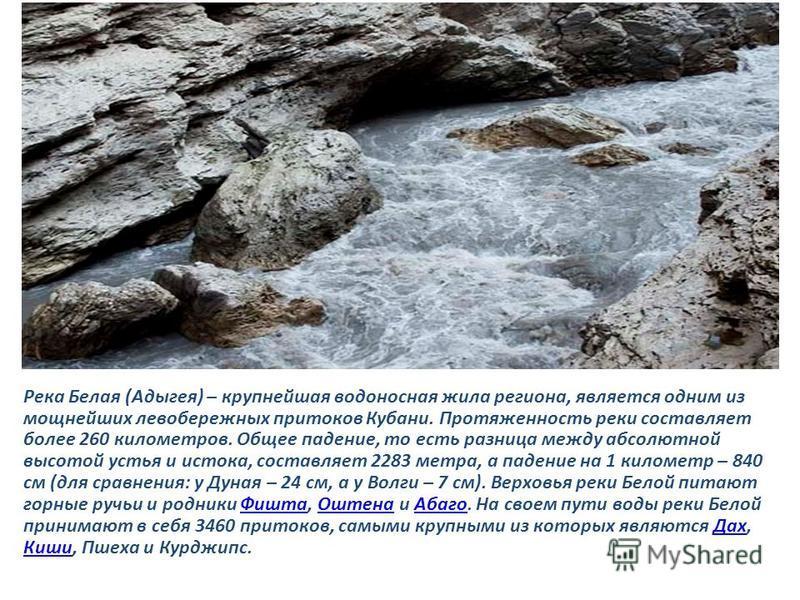 Река Белая (Адыгея) – крупнейшая водоносная жила региона, является одним из мощнейших левобережных притоков Кубани. Протяженность реки составляет более 260 километров. Общее падение, то есть разница между абсолютной высотой устья и истока, составляет