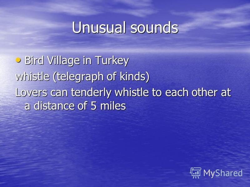 Unusual sounds Bird Village in Turkey Bird Village in Turkey whistle (telegraph of kinds) Lovers can tenderly whistle to each other at a distance of 5 miles