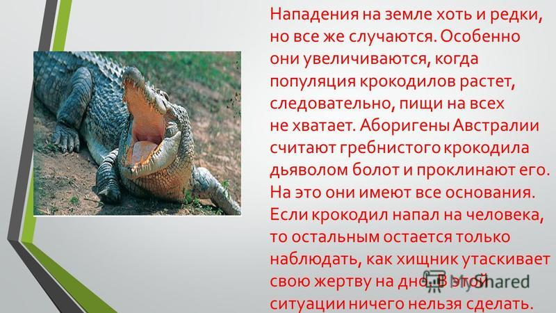 Нападения на земле хоть и редки, но все же случаются. Особенно они увеличиваются, когда популяция крокодилов растет, следовательно, пищи на всех не хватает. Аборигены Австралии считают гребнистого крокодила дьяволом болот и проклинают его. На это они