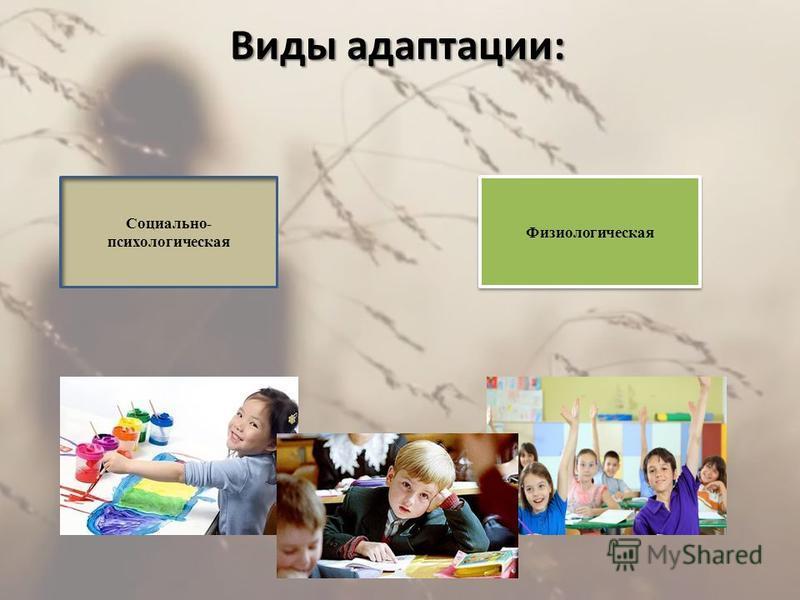 Виды адаптации: Социально- психологическая Физиологическая