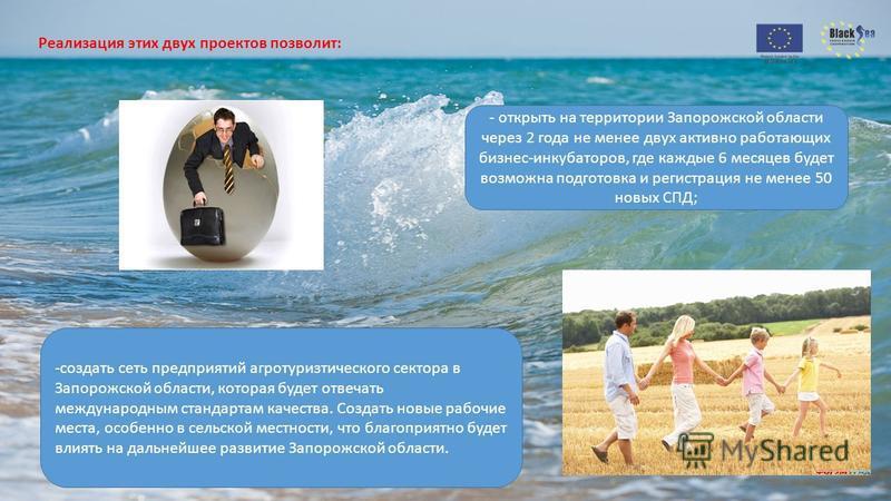 Реализация этих двух проектов позволит: - открыть на территории Запорожской области через 2 года не менее двух активно работающих бизнес-инкубаторов, где каждые 6 месяцев будет возможна подготовка и регистрация не менее 50 новых СПД; -создать сеть пр